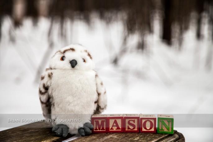 owl & Mason
