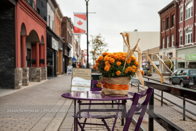 Flower-on-Downtown-Table-IMG_5197-edit