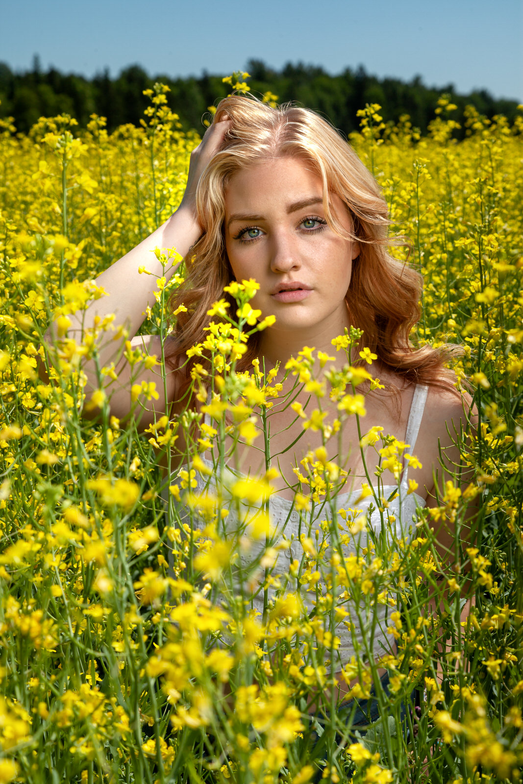 Derica in Canola Field